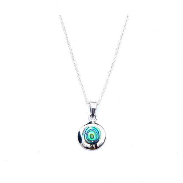 Stunning Round Dainty Abalone Necklace