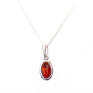 Dainty Amber Oval Necklace